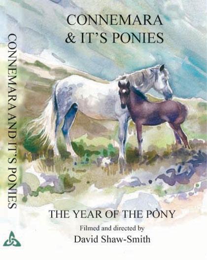 Connemara & it's ponies