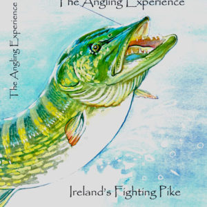 The Angling Experience - Ireland's Fighting Pike