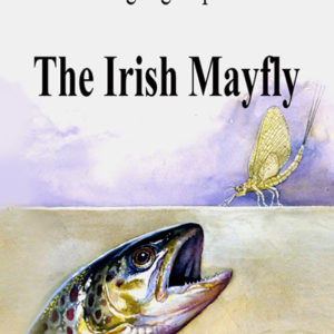 The Angling Experience - Irish Mayfly